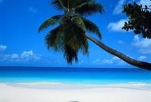 Favorite Places / Bahamy, Maledivy, Srí Lanka, Thajsko