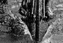 Cyclocross - Mud, Sweat and Tears / by Autumn Ahlers