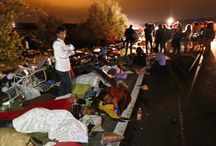 Migrans