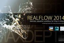 RealFlow/Tutorial
