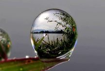 Reflections & Refractions / We see the world through the lens of all our experiences; that is a fundamental part of the human condition.  Madeleine M. Kunin / by Rebecca Stewart