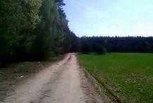 NATURA - POLSKA