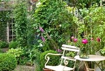 A Seat in the Garden / Every garden needs a little nook for resting, a touch of whimsy, or a private place to enjoy the fruits of your labor.  these are some of my favorite examples.  Enjoy! / by Julie Tiefenthaler