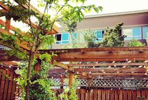 Seattle Outdoor Dining / Best spots to dine outdoors those few months of the year that Seattle has fantastic weather. May - October. And sometimes we have beautiful outdoor weather in March and April.