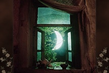 Moon / by Donna Diaz