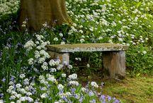 Levähdydpaikat puutarhassa Restplaces in the garden