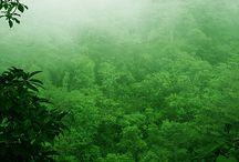příroda / Krásy přírody
