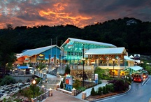 Gatlinburg TN The Beautiful! / One of my most favorite places! / by Anita Boothe