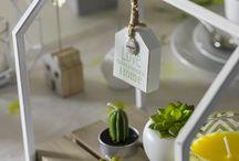 Fresh! / Der Frühling bringt frischen Wind in unser Zuhause – in Form von wunderbaren Pastellfarben, frischem Grün und skandinavischem Einfluss.