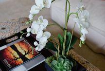 decoracion con orquídeas