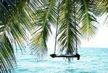 Beachwear & Tropic