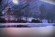 winter / by Clio Rebillon