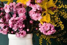 flower inspired Interior