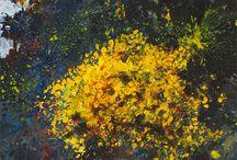 Oil Paint - Landscape