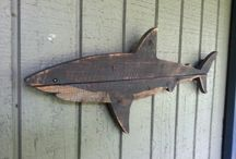 """SHARKS COLLECTIONS / """"squali"""" la passione di mio figlio"""