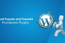 Wordpress Development / Wordpress is simply an awesome platform for content management. Wordpress has come a long way from a blogging tool to a powerful content management system backed up by an impressive library powerful tools and features. With an interface that allows you to create colorful, feature-filled and engaging websites, Wordpress is an excellent choice for small-sized to corporate business enterprises. A look into the various perspective of Wordpress sites.
