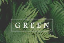 Wallpapers Green