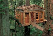 Home, Tree Home / Age does not take ones desire for a tree house away it only makes the design more elaborate!