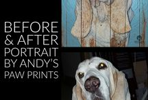 Pet Portrait Before & Afters by Andy's Paw Prints / Pet portrait before and afters by Andy's Paw Prints