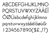 Fonts + Typography. / An amazing element of making.