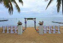 Beach Ceremony Setups
