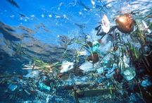 Underwater trash :( / Visit our site www.snorkelaroundtheworld.com Build up our snorkeling community :)