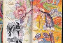 Malen und Zeichnen / malen und zeichnen in allen Variationen