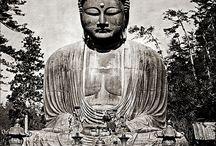 Buddha / by Deb Karotick