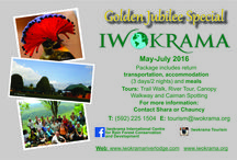 SPECIALS! / Specials rates for the Iwokrama River Lodge.