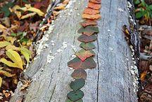 Nature Art / Leaves, sticks