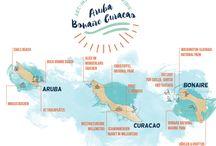 Reisen: Aruba / Aruba - eine der ABC Insel. Paradiesischer Strand, Flamingos und Cocktails.