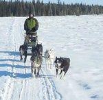 Into the wild...Alaska