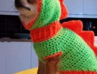 Dog coat crochet
