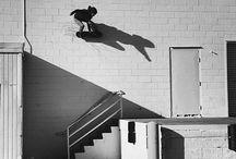 Skate or Die / Skate city