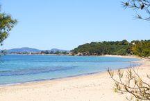Les plages / Un des charmes de Bormes les Mimosas, est sa bordure maritime et l'apparence sauvage qui s'en dégage. Criques et plages de sable fin alternent sur plus de 22 km, face aux îles d'Or, du Levant et de Port Cros.