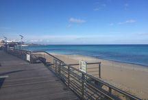 Floros SA @ Cyprus