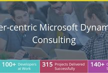 Microsoft Dynamics CRM Consulting