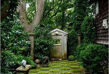 Green Thumb Garden & Ideas / by Angie T