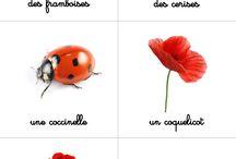 nomenclatures / images classifiées
