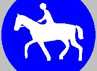Mon cheval, la route et moi