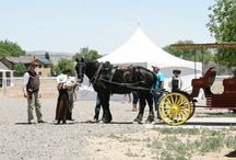 CVACC Cuts the Ribbon for YHS Equine Initiative / June 4th, the Chino Valley Area Chamber of Commerce was delighted to have been part of the opening day festivities that culminated several years of efforts to take this initiative live.  Congrats to the Yavapai Humane Society Team for a job well done!