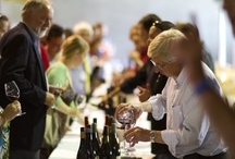 What's happening at Bethany Wines / From vintage to wine tastings and everything in between