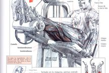 workout ποδια