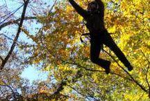 Fall at Asbury Hills / Celebrating the season of fall