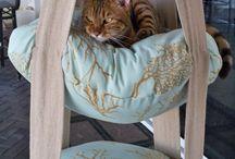 Gör-det-själv -projekt katter...