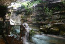 akvarium strömmande