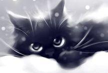 Apofiss Cats