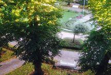 The Eira Park and neighbourhoods