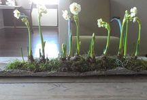 Tischdeco Frühjahr