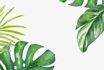 folhas verdes aquarela